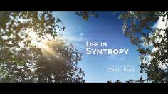 """""""Vida em Sintropia"""" é o novo curta do Agenda Gotsch. Uma edição feita especialmente para ser apresentada em eventos na COP21 em Paris,…"""