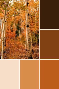 Bedroom Colour Palette, Fall Color Palette, Colour Pallette, Rustic Color Palettes, Rustic Colors, Colours That Go Together, Pintura Exterior, Color Combinations For Clothes, Desert Colors