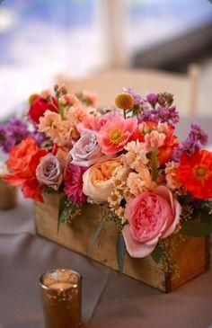 1229831_10151728225362655_1655291567_n petals, ink.