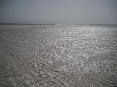 e quando c'è la bassa marea...