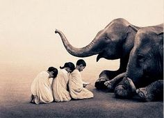 by Canadian photographer Gregory Colbert