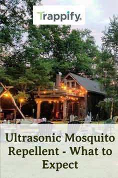 The market has a wide array of ultrasonic mosquito repellent. They all promise to keep mosquitos away. But, do they really work? Ultrasonic Mosquito Repellent, Insect Repellent, Indoor Vegetable Gardening, Organic Gardening Tips, Hanging Plants, Indoor Plants, Keeping Mosquitos Away, Citronella Candles, Pest Control