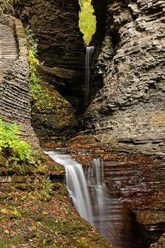 Waterfall Canyon, Watkins Glen, New York  photo via xerol