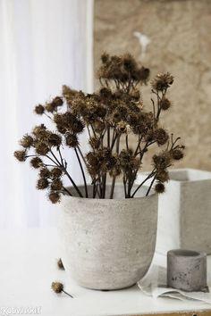 Talventörröttäjä kotiin – 5 kaunista ideaa!   Kotivinkki Planting Flowers, Vase, Plants, Anna, Home Decor, Decoration Home, Room Decor, Plant, Vases