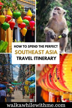 Thinking of backpacking Southeast Asia, and trying to decide which Southeast Asia travel destinations to check out? With so many incredible Southeast Asia travel spots, it can be hard planning a Southeast Asia travel itinerary. So, if you want some help, check out my 1 month Southeast Asia itinerary! | Southeast Asia solo female travel | Southeast Asia travel route | Southeast Asia travel guide | Southeast Asia travel places to visit | best Southeast Asia itinerary | Southeast Asia bucket list Travel Guides, Travel Tips, Travel Destinations, Travel Around Europe, Travel Around The World, Bali Travel, Japan Travel, Backpacking Asia, Travel Route