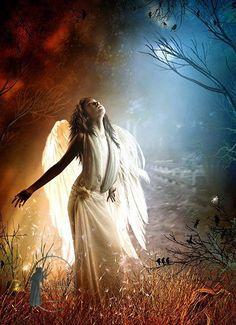 Angel of the light