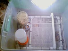 I really like this idea for an easy to clean brooder bottom.