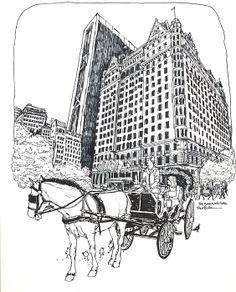 Nyc The Plaza Hotel - Robert Birkenes