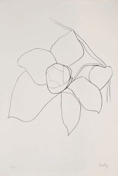 Ellsworth Kelly #art #illustration