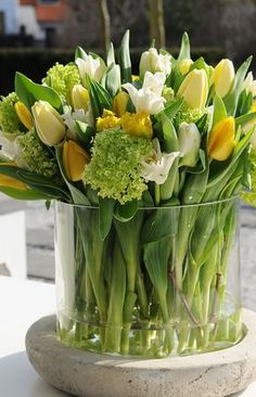 flowers.quenalbertini: Tulips in glass container