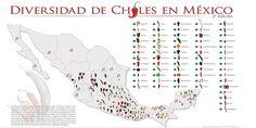 Diversidad de Chiles en México