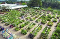 Best Planteria   Horticulture Week
