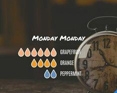 Monday Monday Diffuser Blend