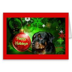 cout christmas rottweiler - Google Search