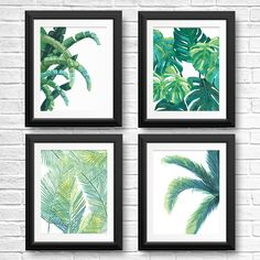 Luscious and green, these prints will keep you cool on even the hottest of beach days. Relax in a hammock under the wide canopy of these tropical trees. This listing features four art prints of original watercolor and acrylic tropical botanical paintings: (1) Banana tree print, (1) Monstera leaf print, (1) Tropical Fern print, (1) Palm tree print. Each print is available individually, but we love the artful arrangement of all four. Bring a bit of the tropics to your home. Now available in…