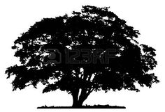 oak tree silhouette: Tree silhouette on white background * MANY great tree patterns