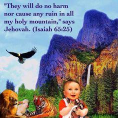 Isa. 65:25 jw.org