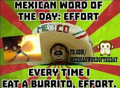 ♥♥♥ Mexican word of the day: Effort. Every time I eat a burrito, Effort! Mexican Word Of Day, Mexican Words, Mexican Quotes, Mexican Humor, Word Of The Day, Mexican Funny, Funny Jokes, Hilarious, Jokes Pics