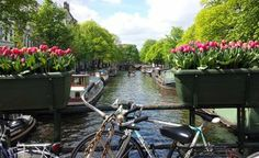 Enjoy the canals in Amsterdam. Rent a small boat, a canoe or a water bike and explore the canals in Amsterdam, The Hague or Utrecht.