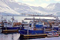 Fishing boats in Dutch Harbor, Unalaska, Aleutian Islands, Alaska