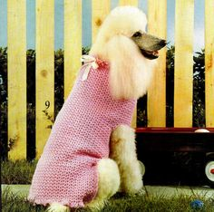 Vintage Crochet V Stitch Dog Sweater Pattern