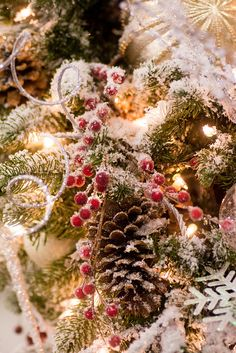 pinecones and holly berries | Flickr