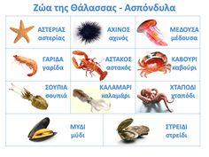Greek Language, Second Language, Sea Theme, Sea Fish, Preschool Kindergarten, Summer Crafts, Summer Activities, Kids, Education