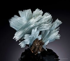 A majestic specimen impressive silky lustrous Baryte crystals forming