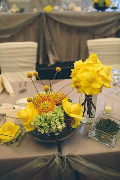 Craspedia, yellow roses and succulents in square glasses. Modern and funky | Turnberry Country Club- North Chicago Suburbs | Kate Miller Photography
