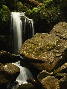 Grotto Falls, Great Smoky Mountains National Park. Stopped here on our way up to Mt. LeConte.     .
