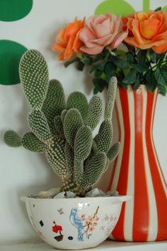 Mini Cactus Garden by mccheeksmayhem on Etsy