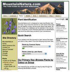 MountainNature