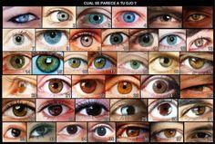 maquillaje de ojos hindu paso a paso - Buscar con Google
