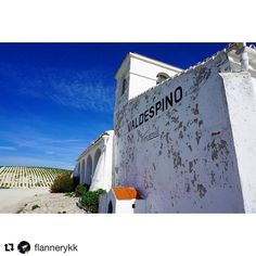 Sherry Postcards by @flannerykk aka Team USA Copa Jerez 2017. A stunning moment captured on her recent visit to the region.  The old architecture of Valdespino with that chalky white calcium carbonate Albariza soil in the background .  #copajerez #coparama #sherishmylove #sherrylover #jerez #sherrymakesyoulivelonger