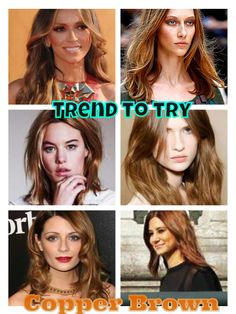 I like the bottom right. dark copper brown hair....going to dye my hair sooooon.  Much easier to maintain than highlights (and cheaper!)