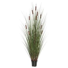 Beachcrest Home Artificial Straight Foliage Grass in Pot