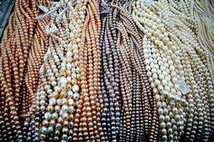 I love all the affordable freshwater pearls from China! Now everyone can wear beautiful lustrous pearls in many colors & sizes. Pearl Jewelry, Jewelery, Jewelry Box, Pearl And Lace, Pearl Diamond, Girls Best Friend, Jewelry Design, Designer Jewellery, Damask