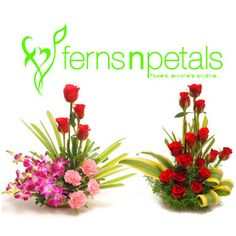 Ferns and Petals Coupons, Ferns and Petals Coupon Codes, Promo Codes, Deals. Browse CouponsDigger for FNP latest online gifts discount coupons and deals.