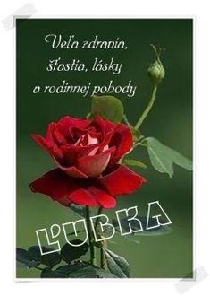 Happy Birthday, Plants, Veils, Horoscope, Happy Brithday, Urari La Multi Ani, Happy Birthday Funny, Plant, Planets