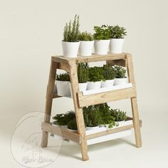 Rustic Wooden Ladder ($135) via Polyvore featuring home, home decor, rusticpelican, rustic home accessories, rustic wooden planters, rustic pots, wooden planters and wood home decor