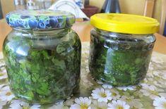 Vlaštovičníkový olej. Účinný prostředek proti klíšťatům si můžete vyrobit sami Samos, Edible Plants, Korn, Pickles, Cucumber, Mason Jars, Health, Relax, Fitness