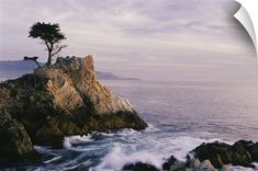 California Coast, wall peel