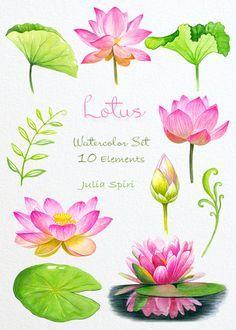 Watercolor Clipart, Watercolor Wedding Invitations, Watercolor Background, Watercolor Flowers, Drawing Flowers, Watercolor Drawing, Paper Background, Lotus Drawing, Watercolor Lotus