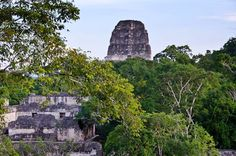 Adventures (and Arachnophobia) at Tikal, #Guatemala | http://www.everintransit.com/tikal-guatemala-mayan-ruins/