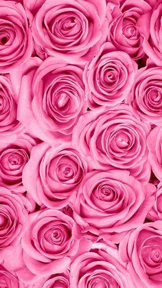Amonlas rosas