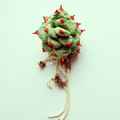 There are a whole bunch of these succulent brooches (with their roots!) LOVE (Hipota)