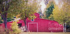 #barn #redbarn #country #rural #farm #red #trees #onlineshopping #art #artcollector #artgallery #homedecor