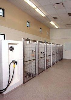 Grady — Veterinary Design Architects – Animal Hospital Design: Copich Architec… – Pin's Page Dog Boarding Kennels, Pet Boarding, Animal Boarding, Dog Kennel Designs, Diy Dog Kennel, Dog Clinic, Animal Clinic, Luxury Dog Kennels, Dog House Plans