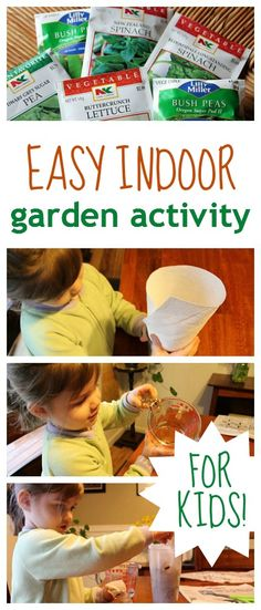 How to make an indoor garden -- perfect learning activity for kids of all ages! You just need seeds and some household items. Simple & inexpensive!