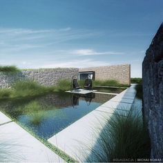 natural pool / landscaping